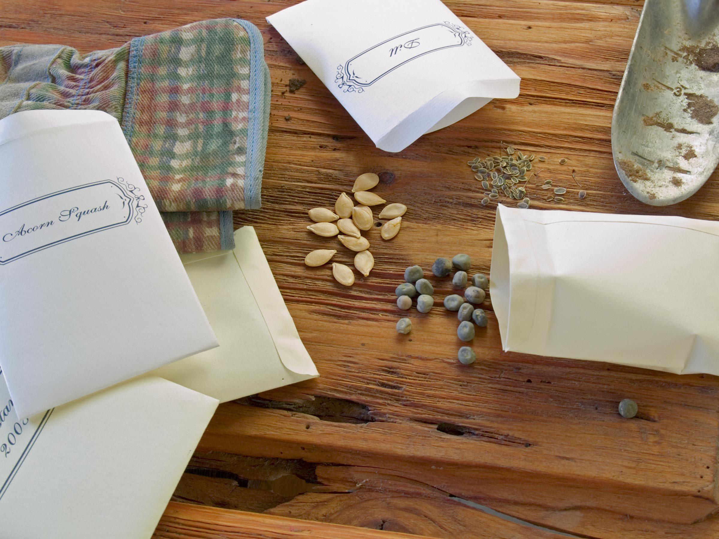 Как сделать пакетик под семена