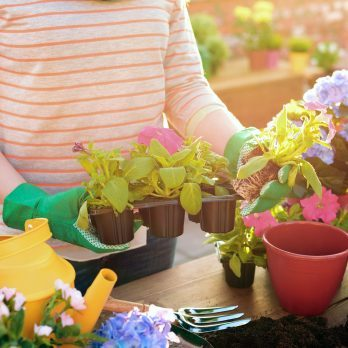 11 Secrets You Won't Learn at the Garden Center