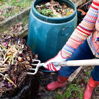 How to Compost: 10 Simple Steps to Get Started