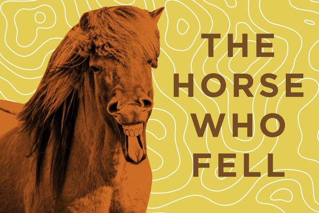 Horse Jokes You Can T Help But Laugh At Reader S Digest