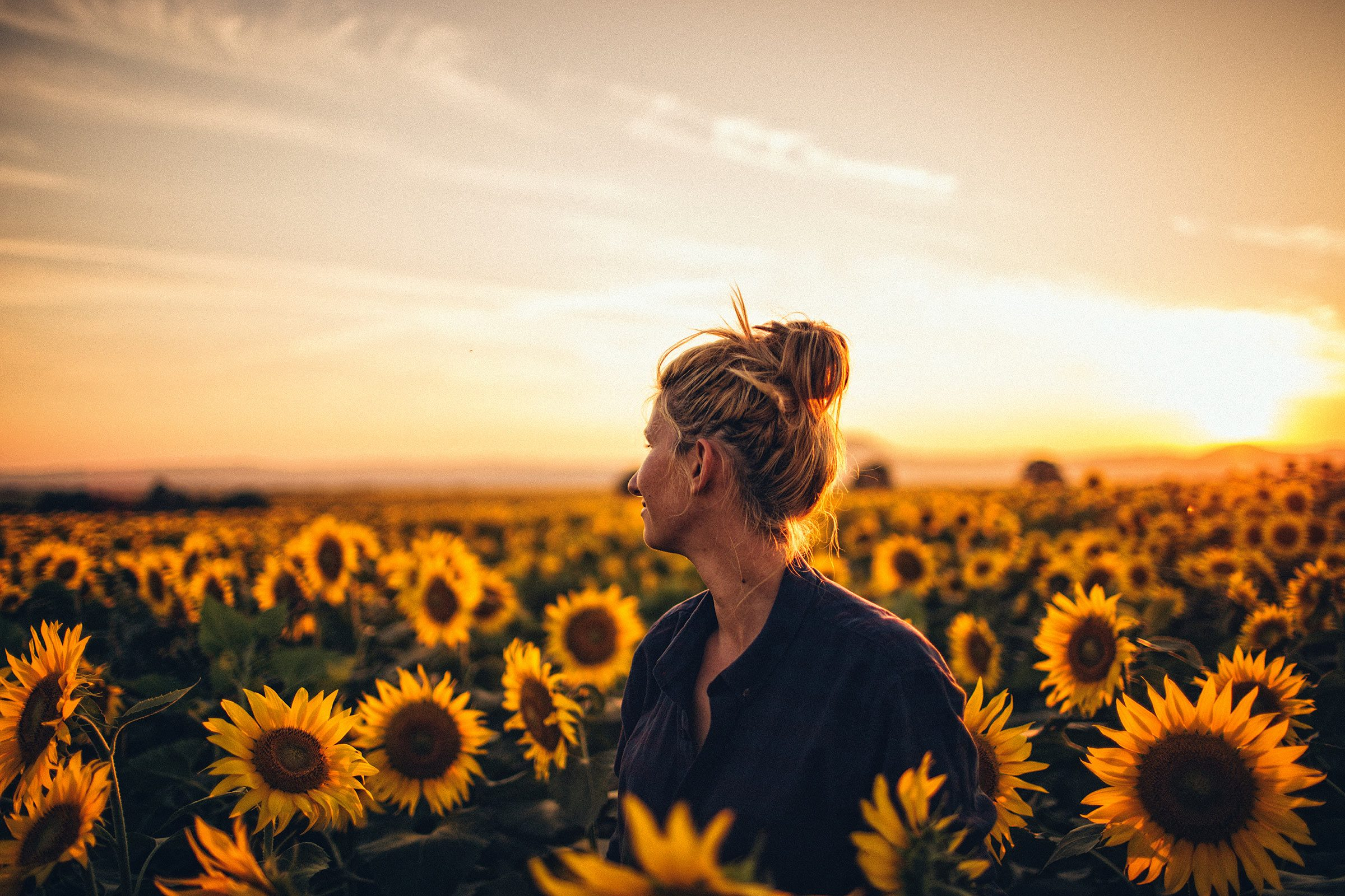 inspirational poems sunflower field