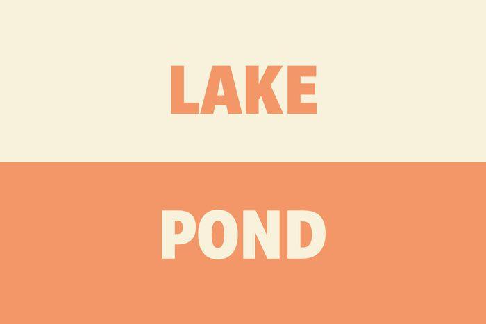 Lake vs Pond
