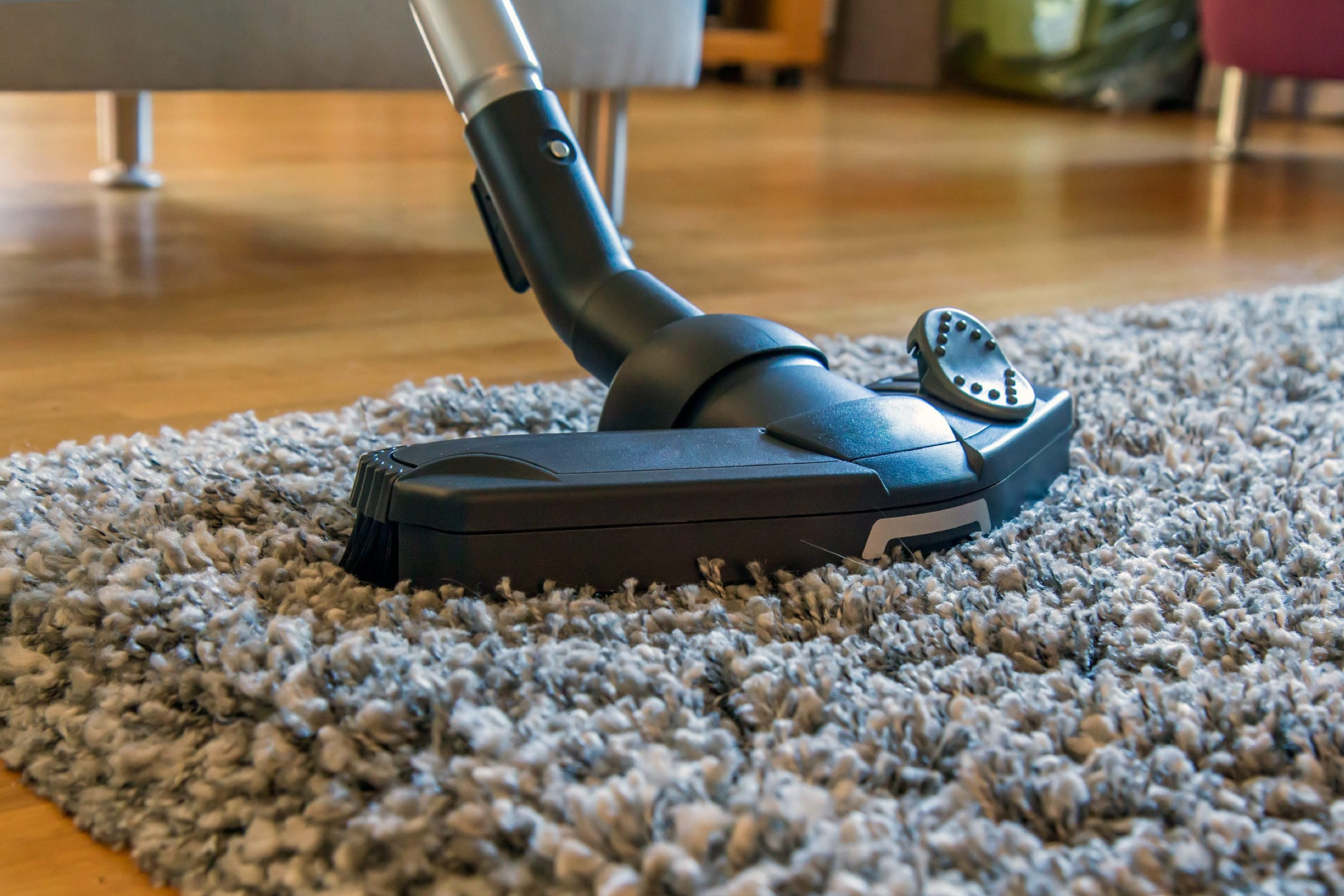 Image result for Why Carpet Cleaning is Necessary istock