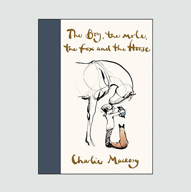 """The Boy, the Mole, the Fox and the Horse"" by Charlie Mackesy"