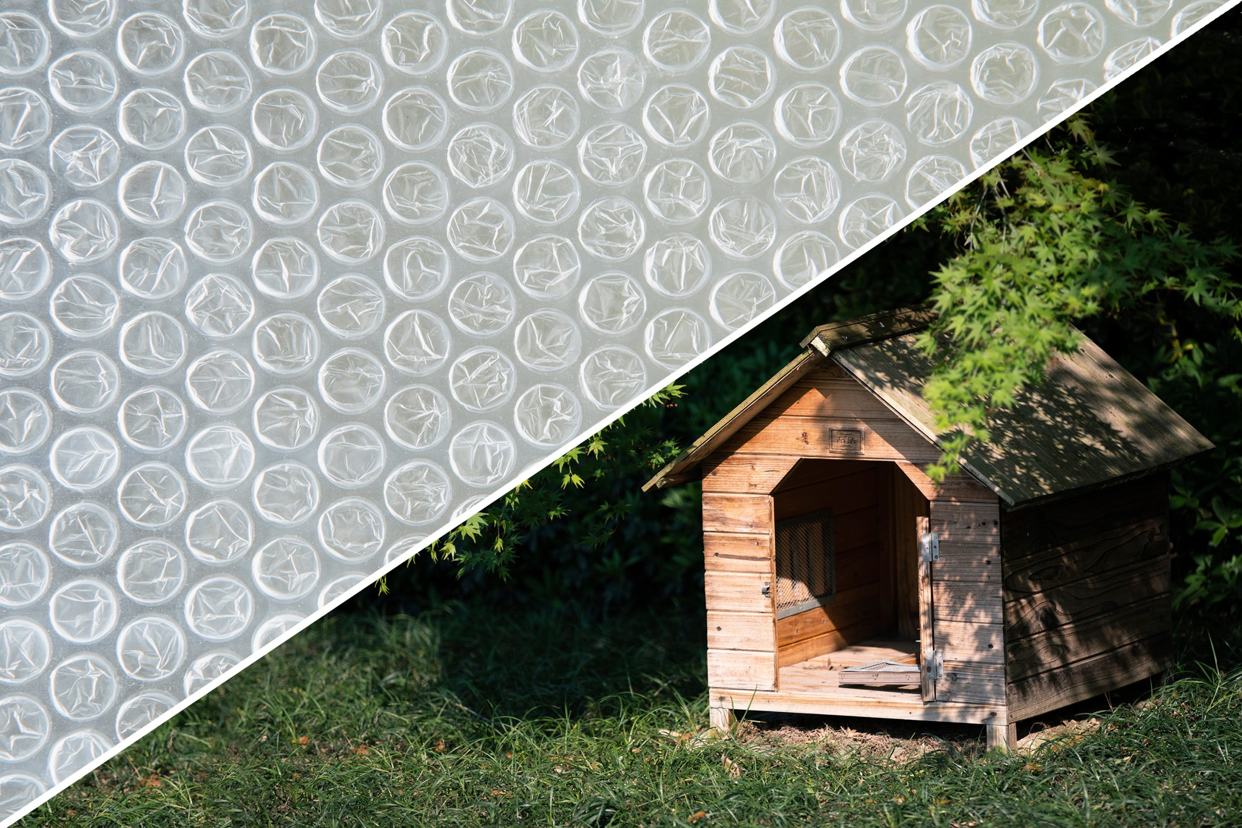 dog house bubble wrap