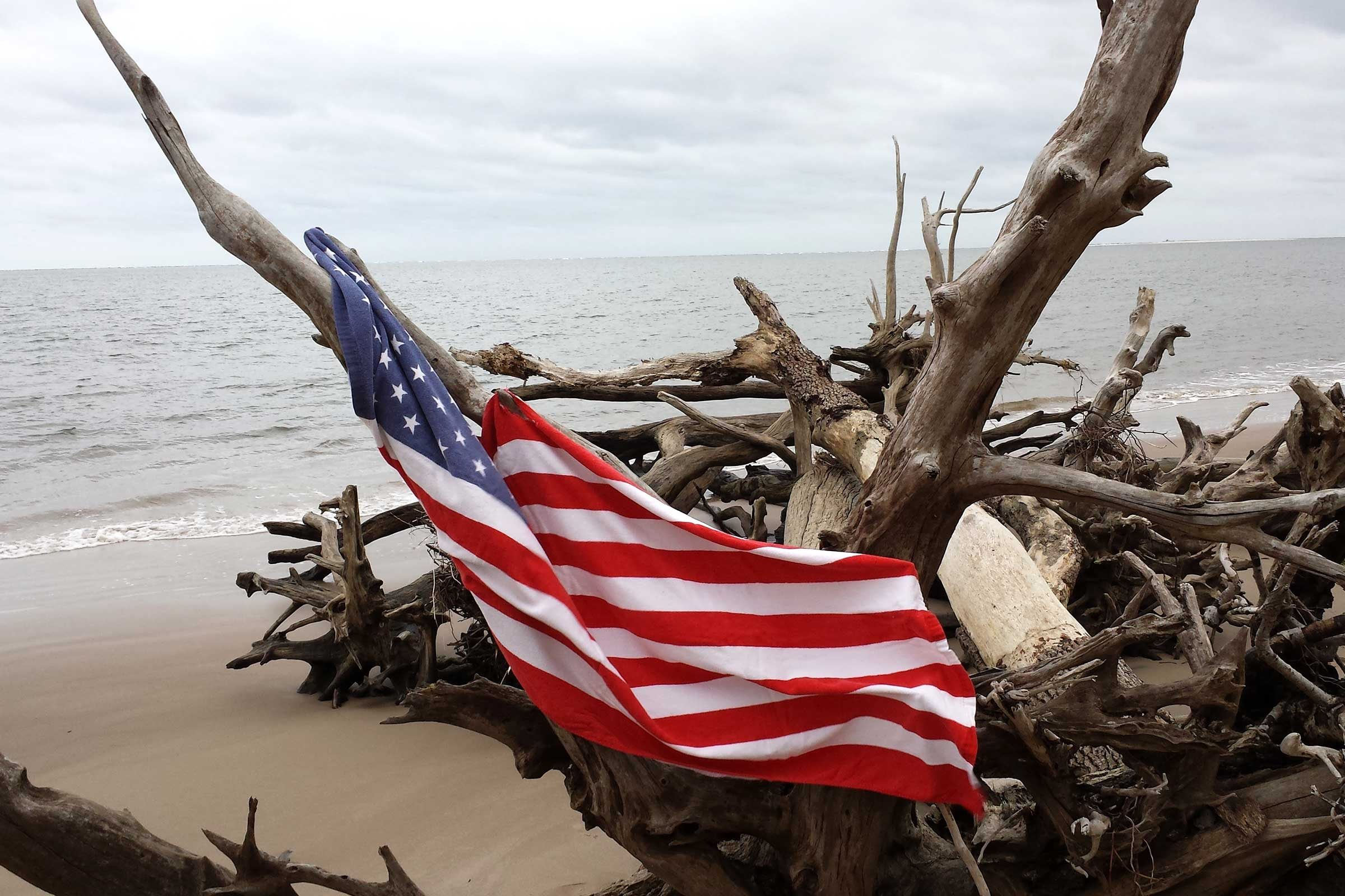 an american flag draped on some driftwood on a beach in florida
