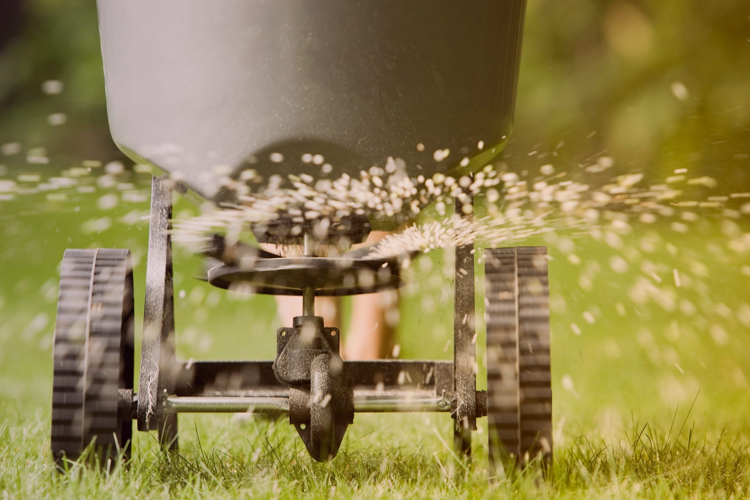13 Things Your Landscaper Won\'t Tell You | Reader\'s Digest
