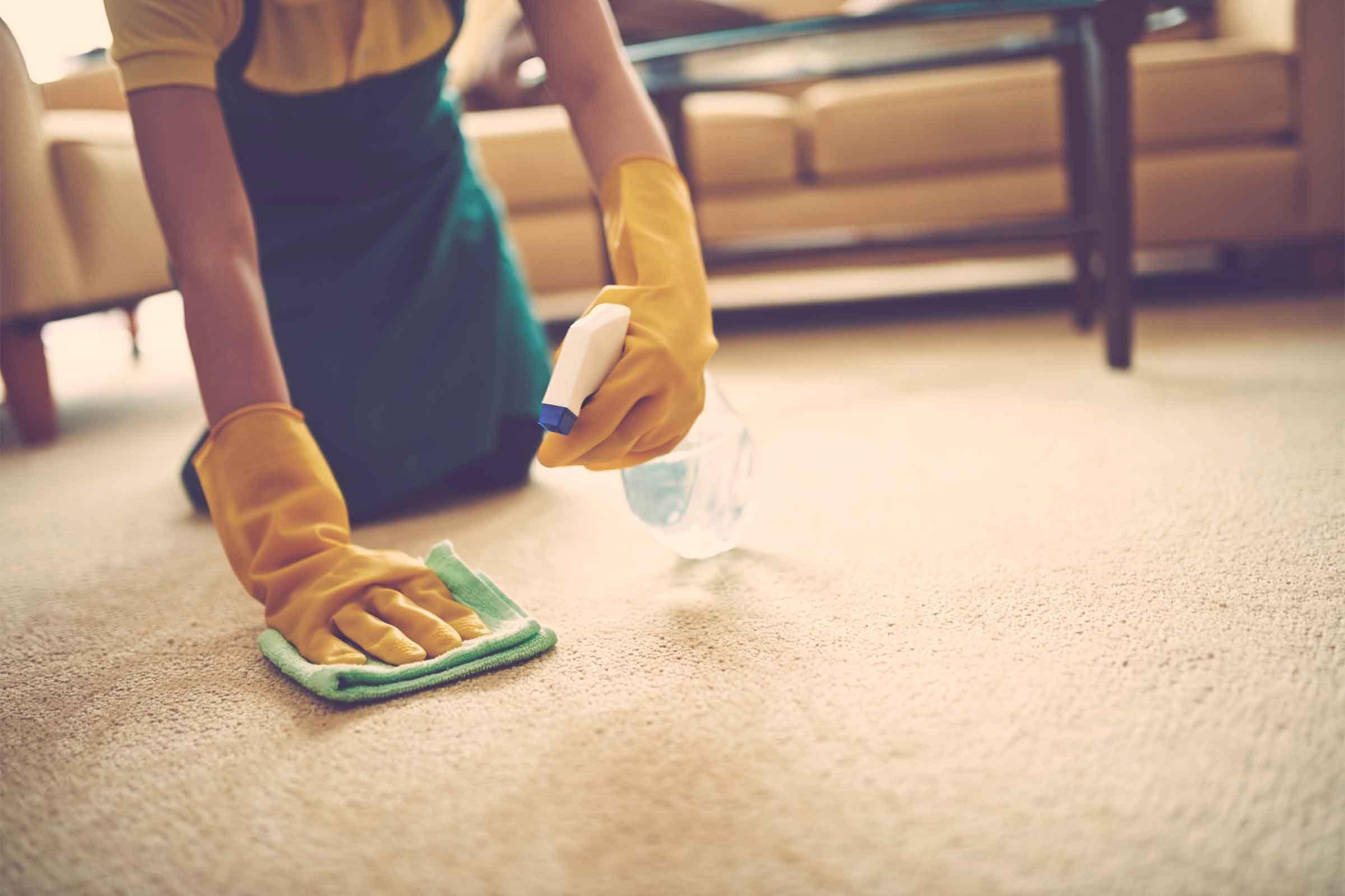Как почистить ковер в домашних условиях быстро и эффективно фото