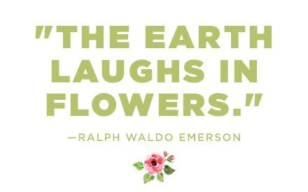 Flower Quotes 12 Calming Thoughts On Flowers Readers Digest
