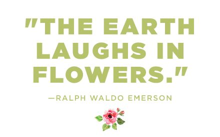12 Lovely Flower Quotes to Fill Your Soul With Calm