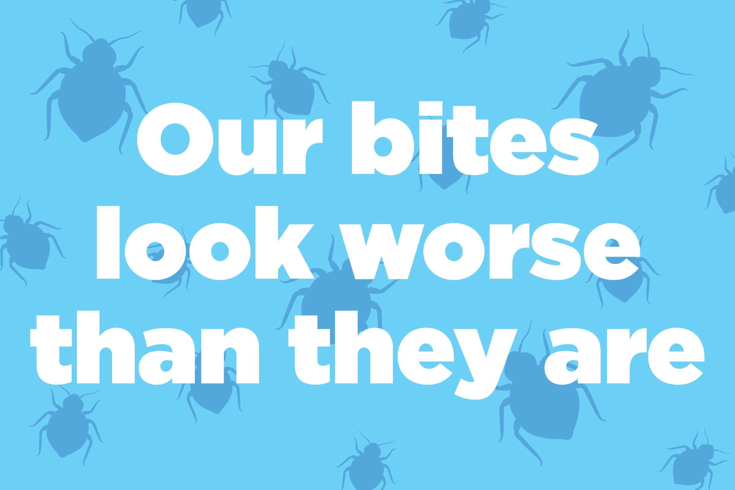 How To Get Rid Of Bed Bugs 16 Expert Tips Reader S Digest