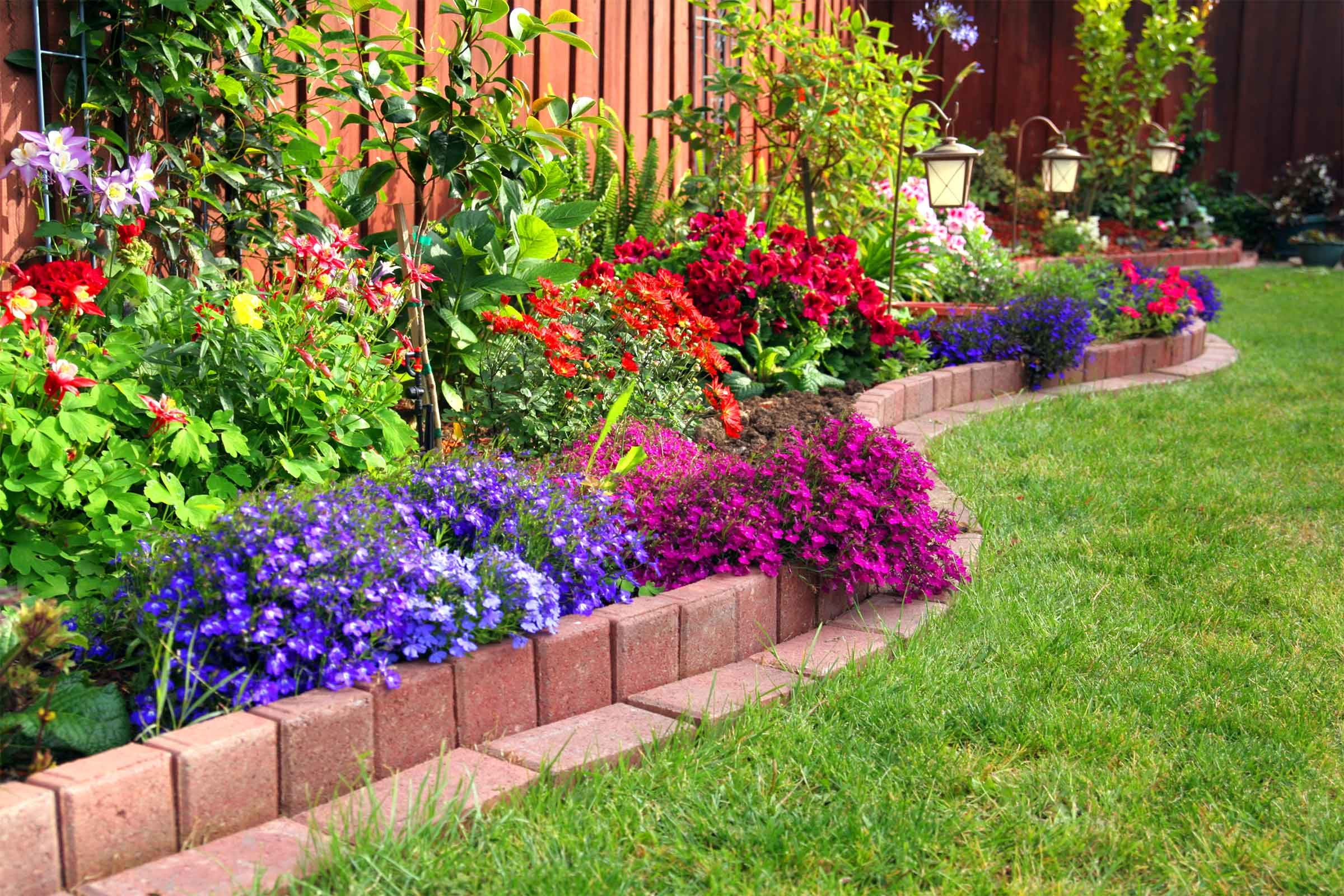 Yard Clean-Up: Mistakes That Make Your Yard Look Messy | Reader\u0027s ...