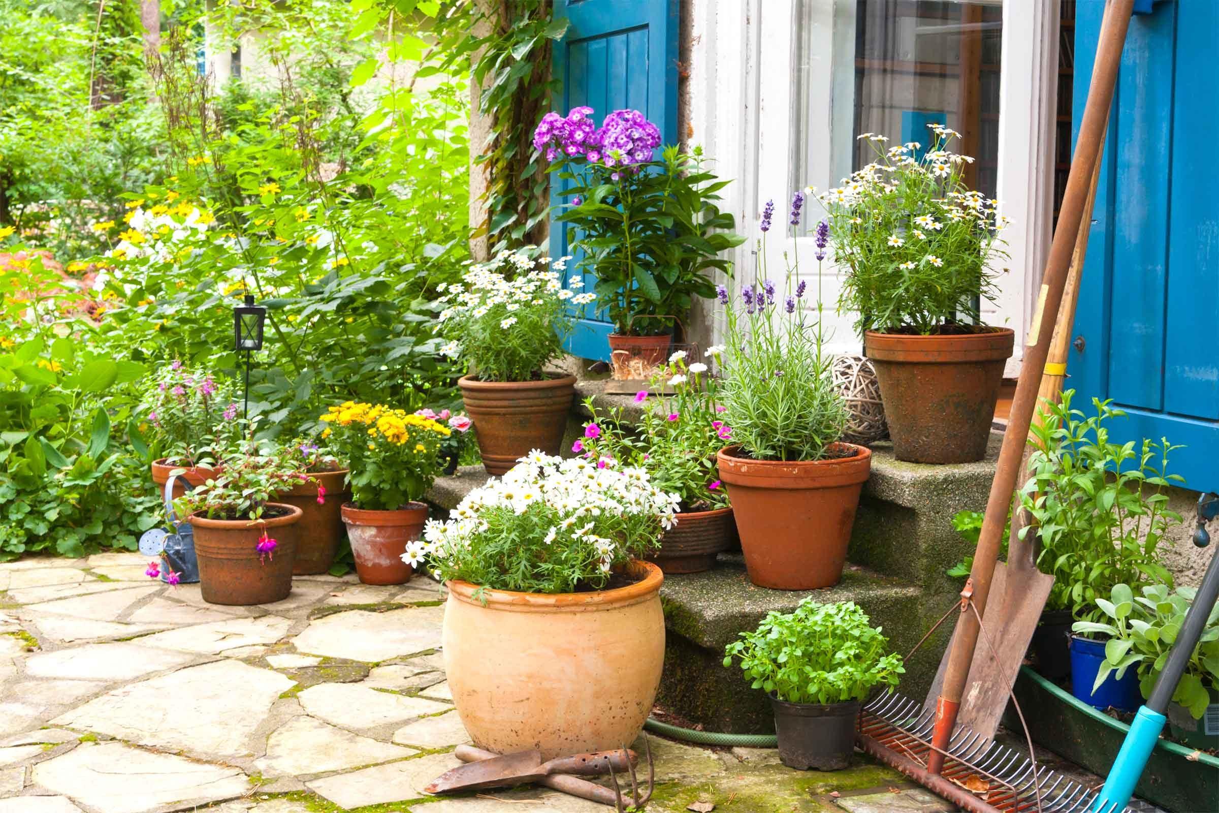 how to prepare your garden to survive winter reader u0027s digest