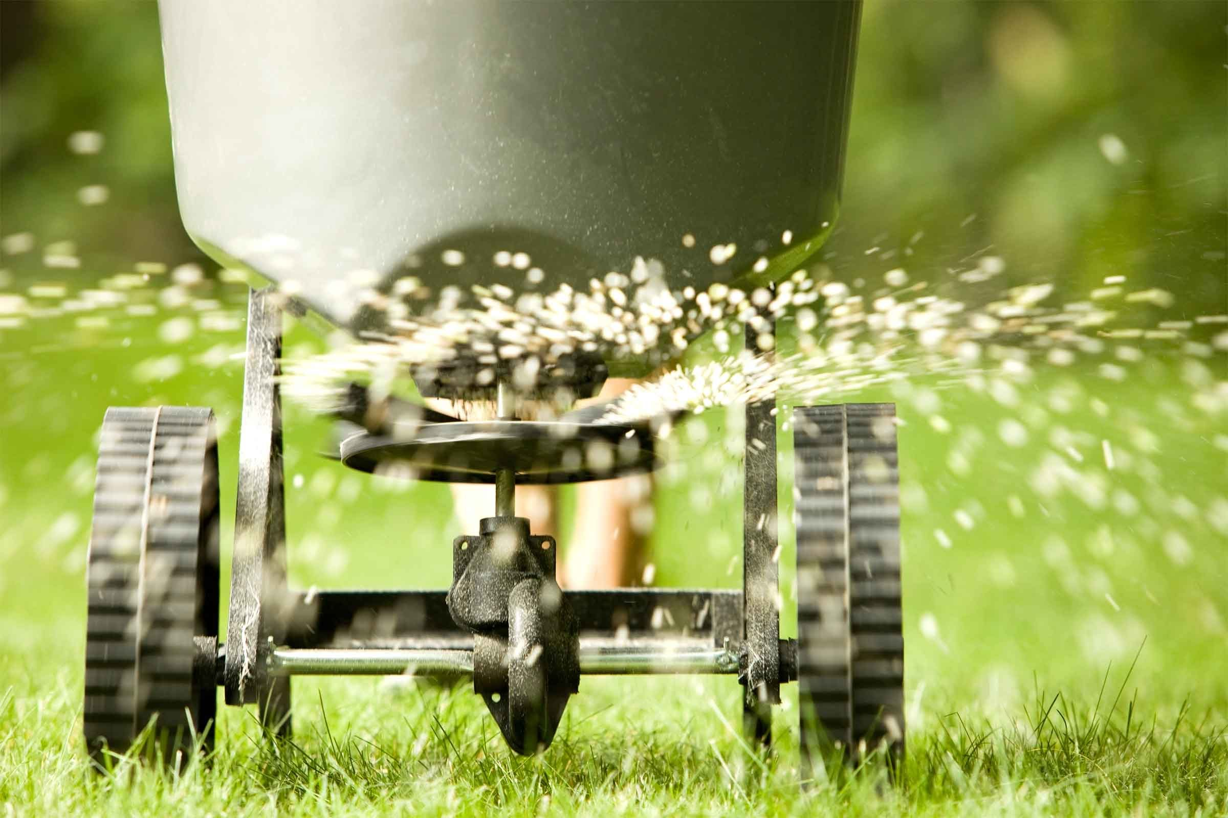 yard clean up mistakes that make your yard look messy reader u0027s