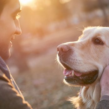 10 Incredible Benefits of Owning a Pet