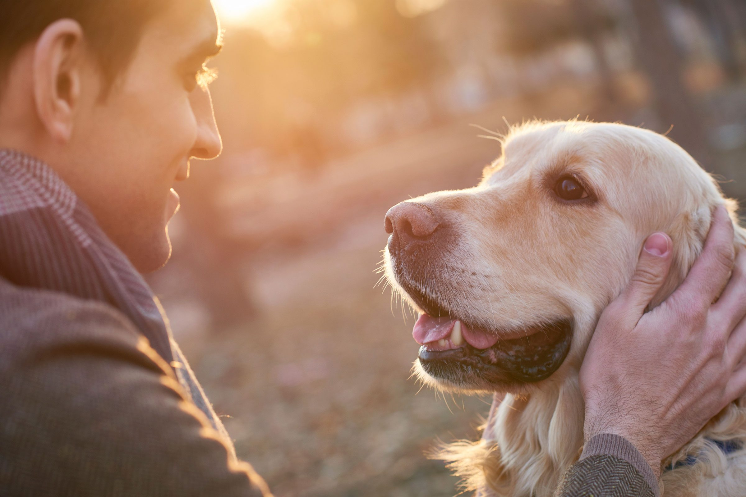 Benefits of Having a Pet, According to Science