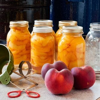 How to Preserve Your Summer Fruits