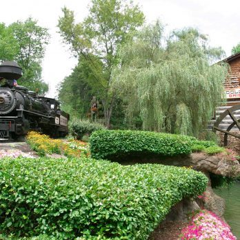 Amazing: Dollywood Became the World's First Autism-Friendly Amusement Park