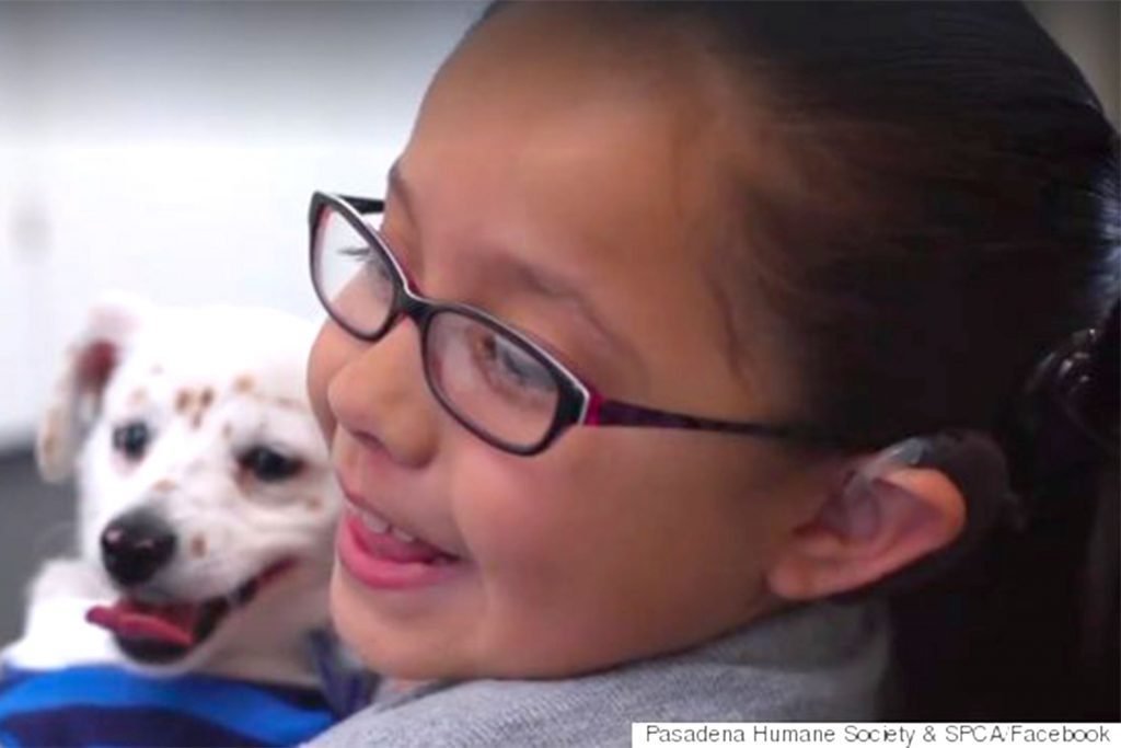 deaf-girl-teaches-puppy-sign-language
