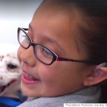 Awww: This Deaf Girl Rescued a Deaf Puppy and Is Teaching Him Sign Language