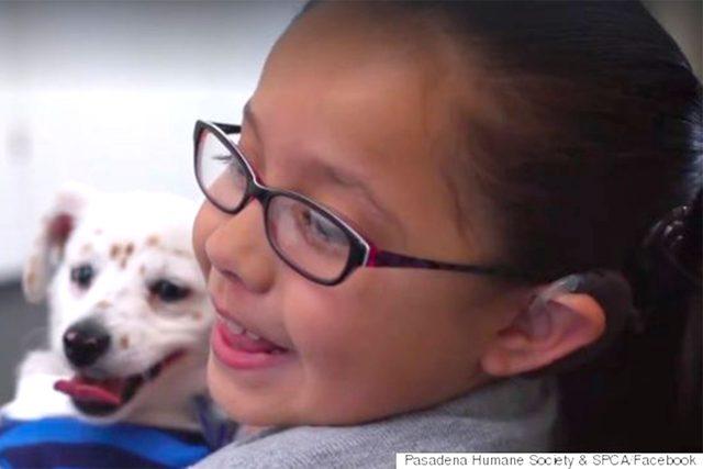 deaf-girl-teaches-puppy-sign-language