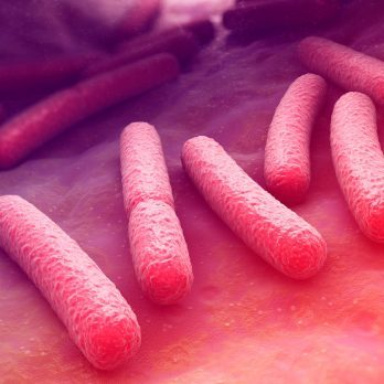 New Science: Can Changing Your Gut Bacteria Treat Anxiety Disorders?