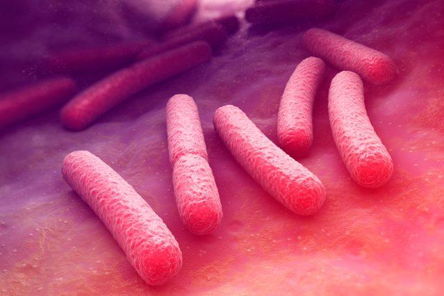 how-gut-bacteria-iLexx