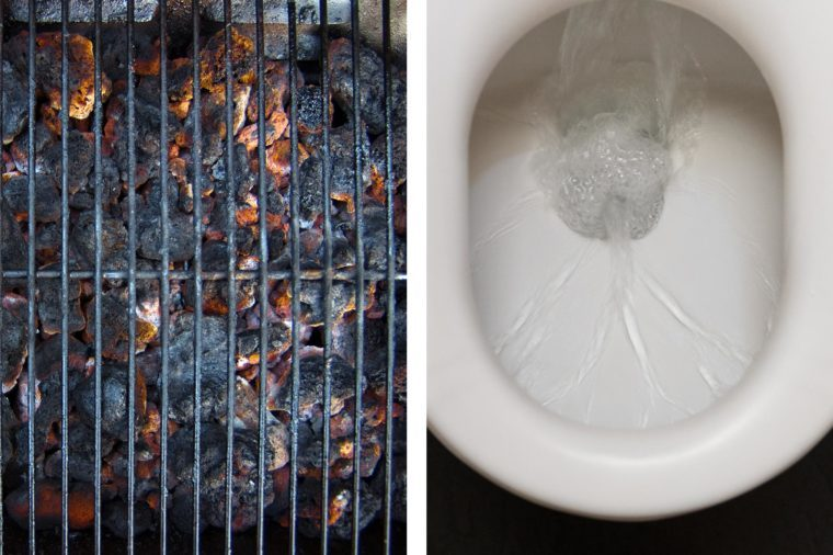 grill toilet seat