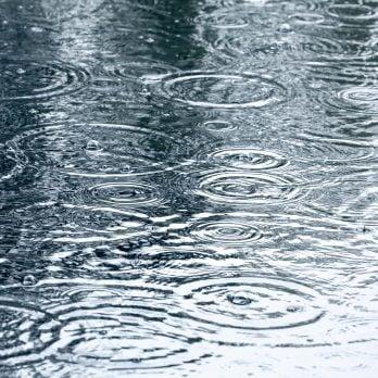 10 Weird Facts About Rain