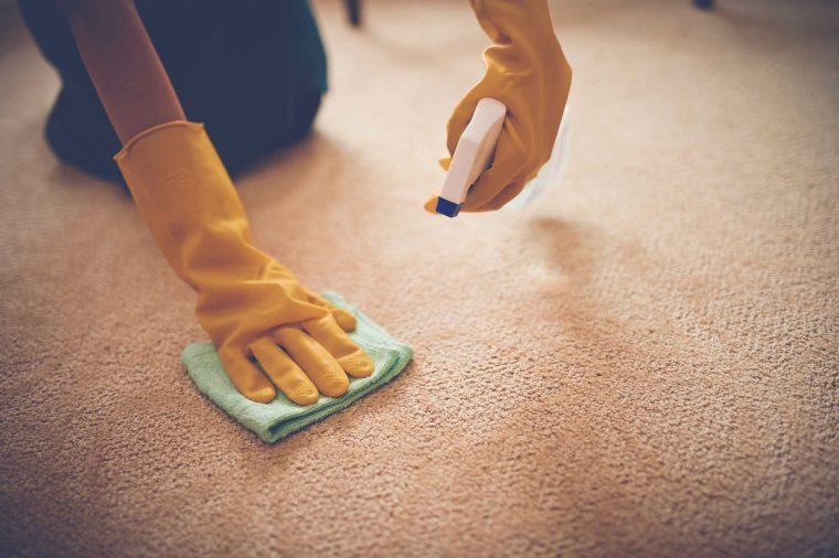 carpet_germy objects