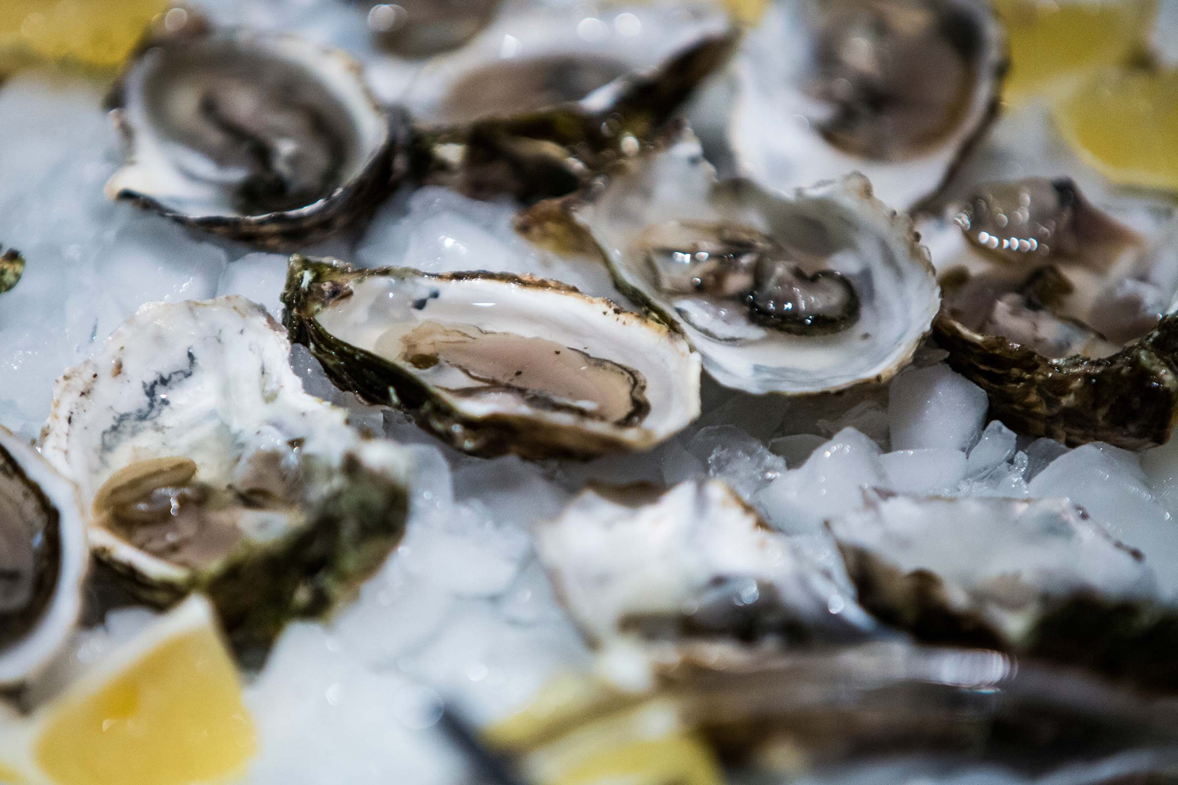Genius uses for club soda readers digest help shuck oysters forumfinder Image collections