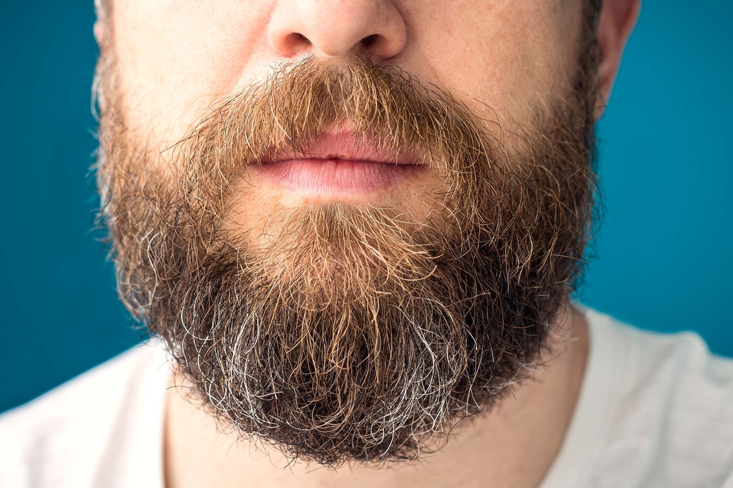 How To Grow A Thick Beard Fast The Only You Ll Need