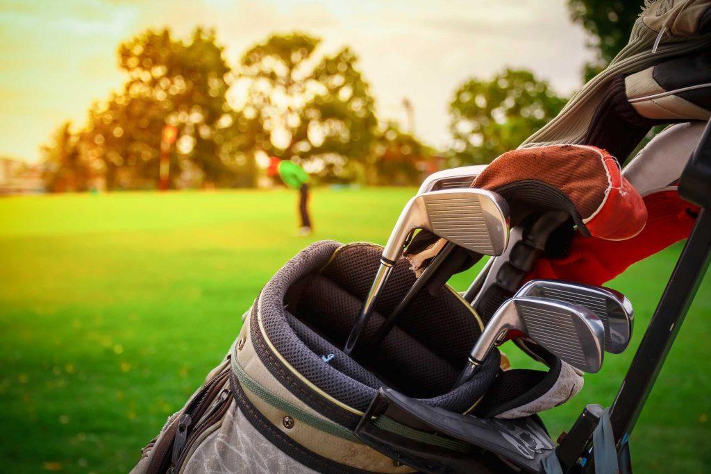 golf bag_junk in garage