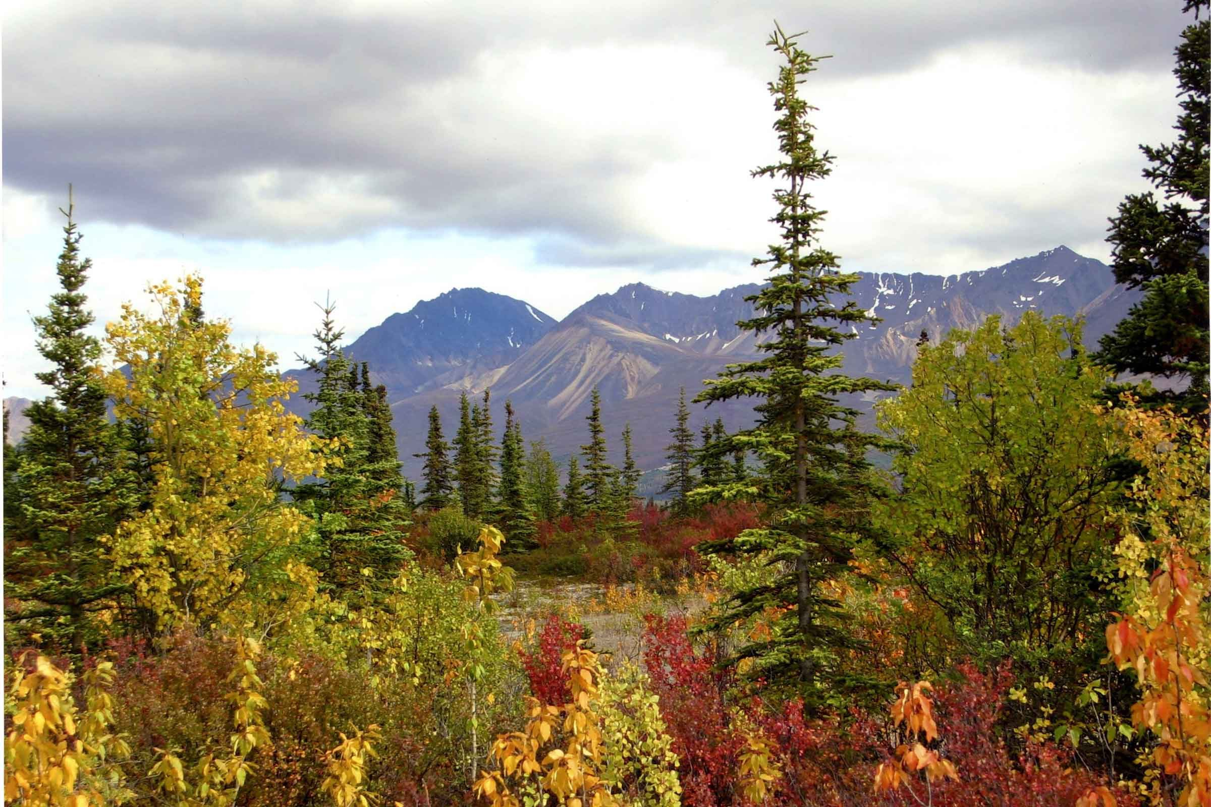Fall Pictures: Photos of Autumn Across America | Reader's Digest