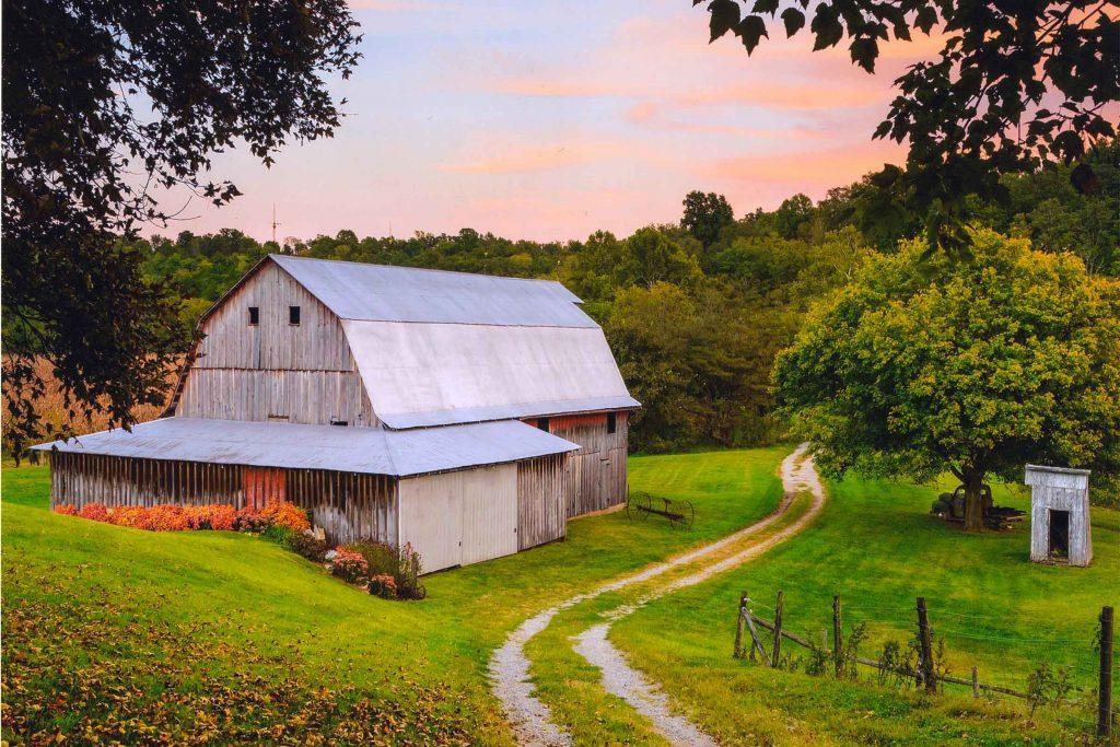 fall-photos-Illinois_Kesner