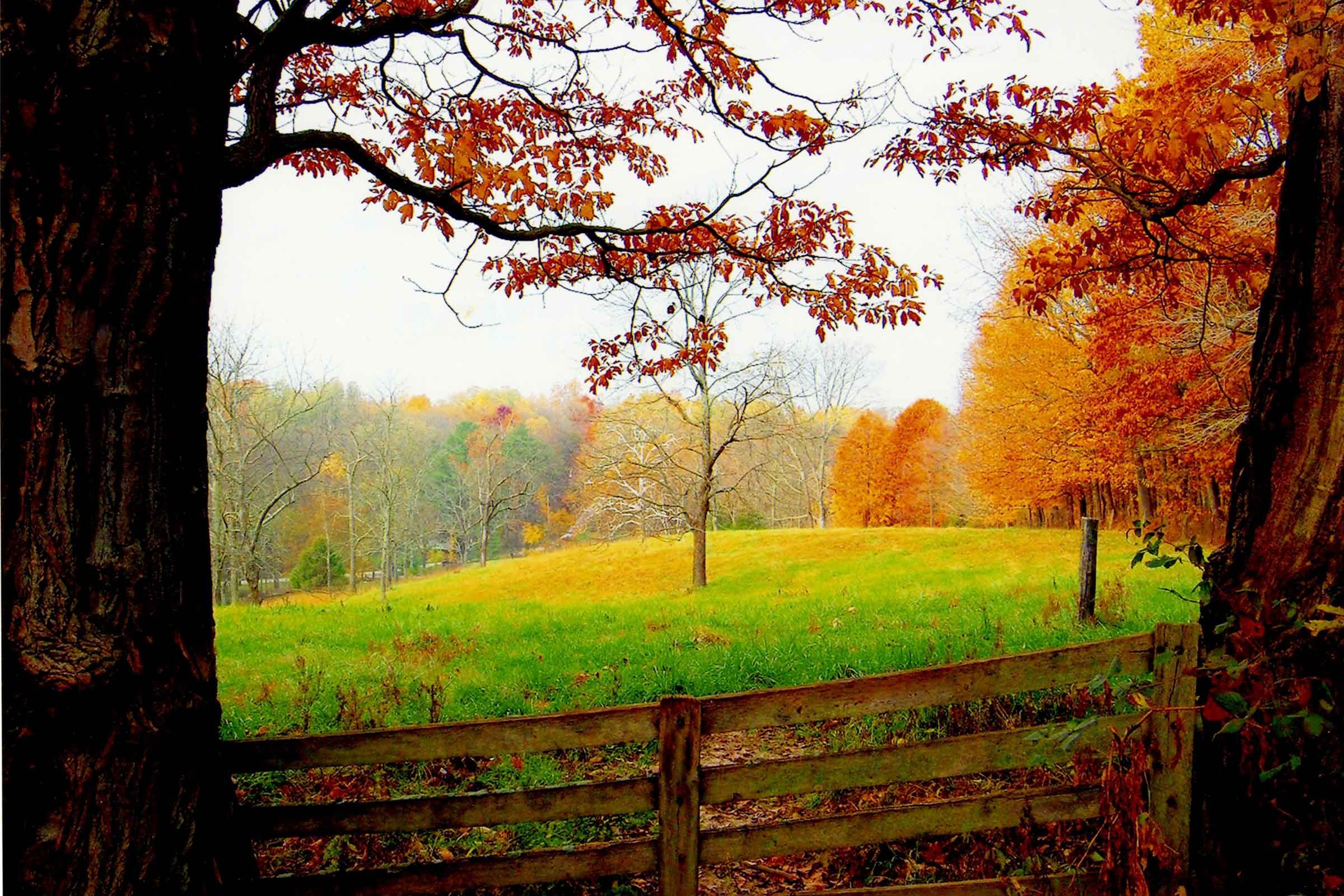 Pictures Of Autum: Fall Pictures: Photos Of Autumn Across America