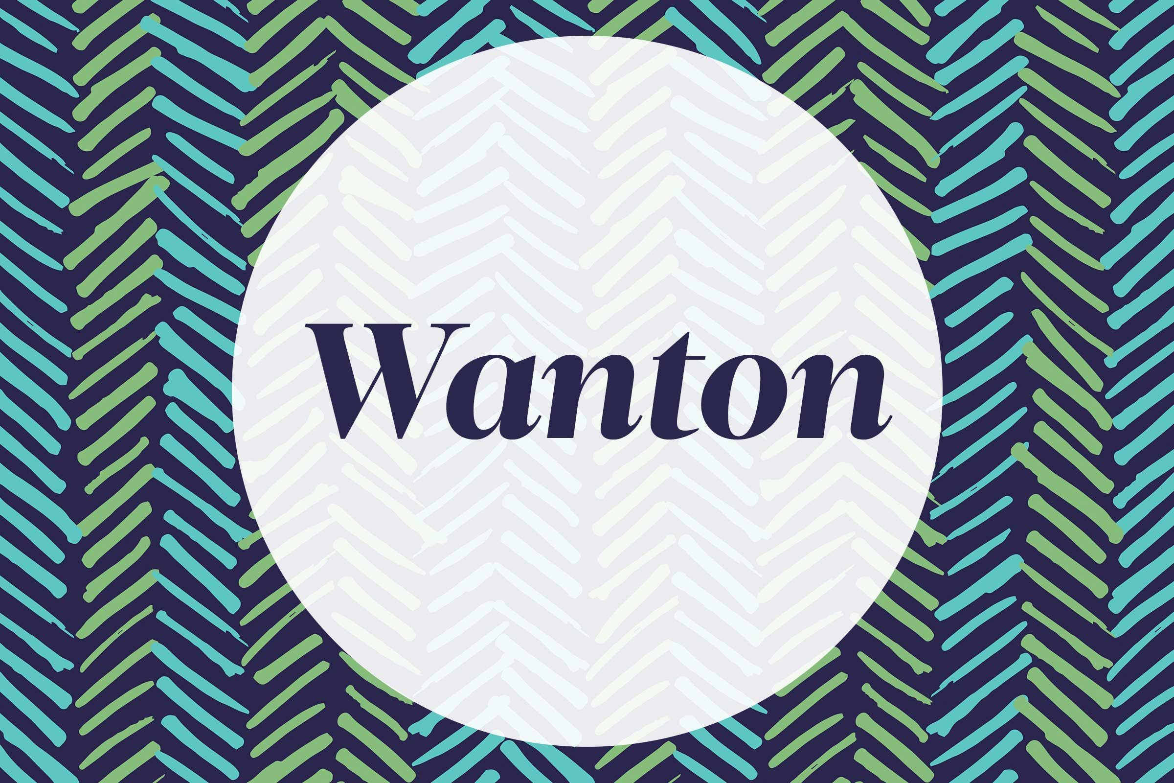 01-wanton-middle-school-vocab-words