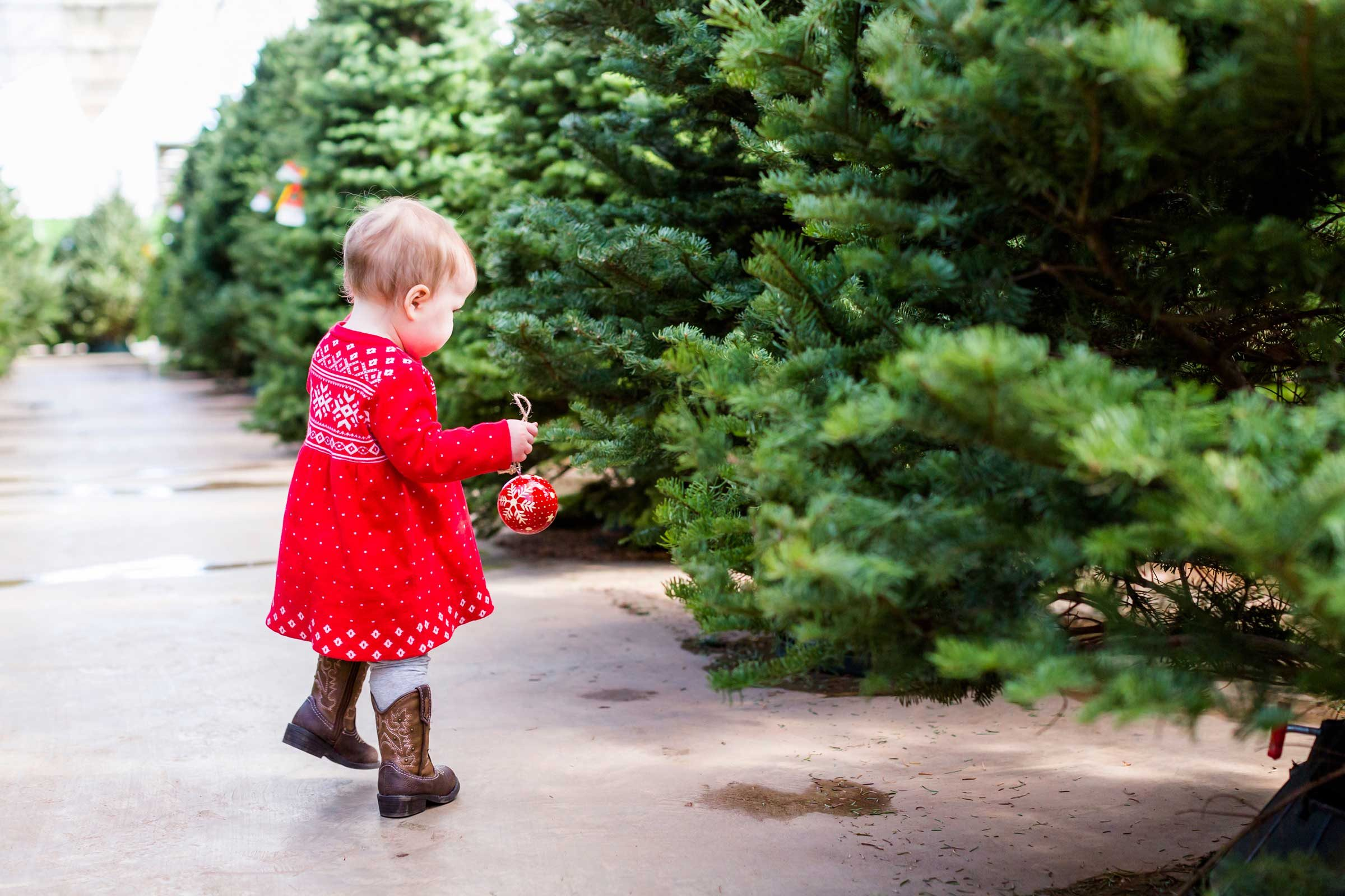 Christmas tree secrets what your tree wishes you knew readers digest youll want to confirm that were still fresh solutioingenieria Choice Image
