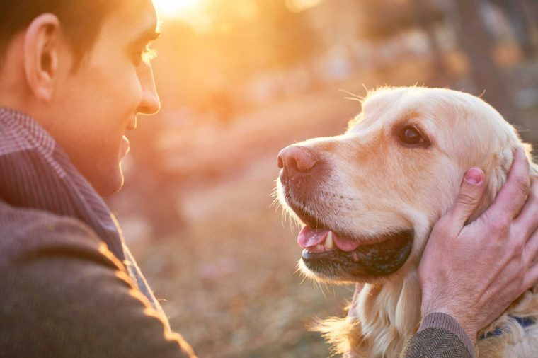 Sure Signs Your Dog Trusts You | Reader's Digest