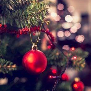 secrets_christmas_tree_wishes_knew_feeding