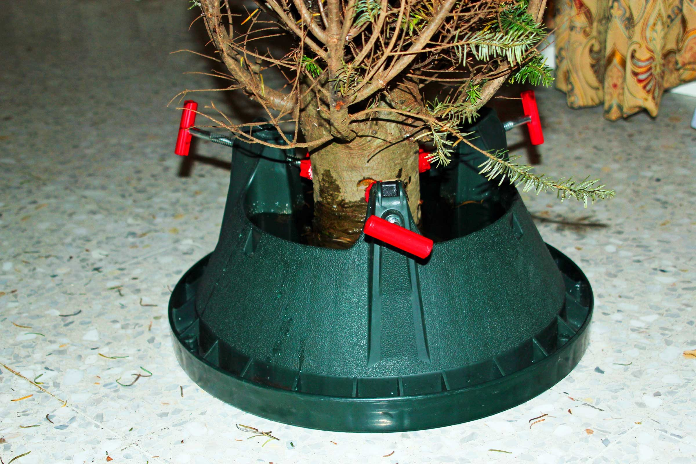 How To Take Care Of A Real Christmas Tree.Christmas Tree Secrets What Your Tree Wishes You Knew