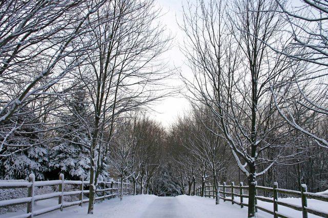 when-woman-stopped-admire-neighborhood-scenery-Winter