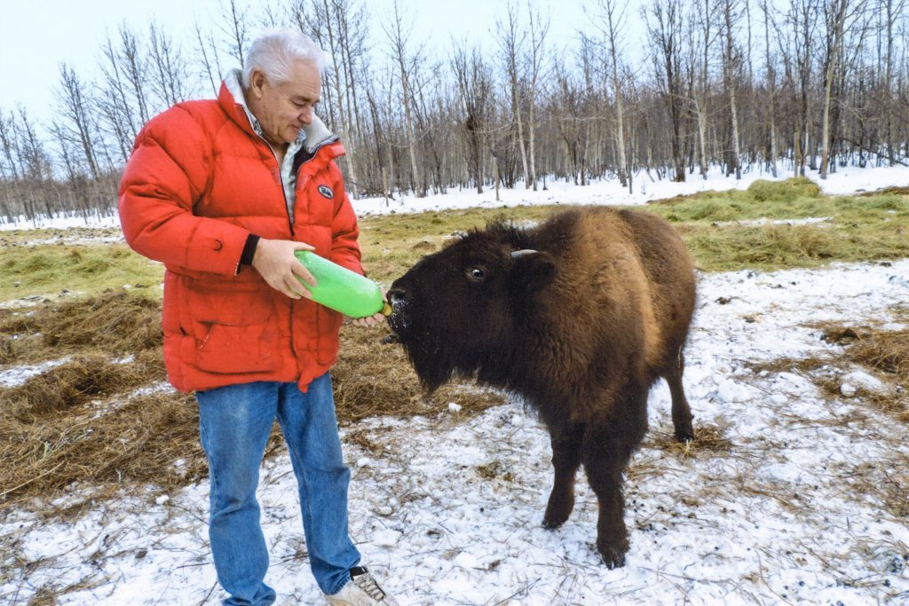 This family raises bison as pets reader 39 s digest for Sanctuary ranch