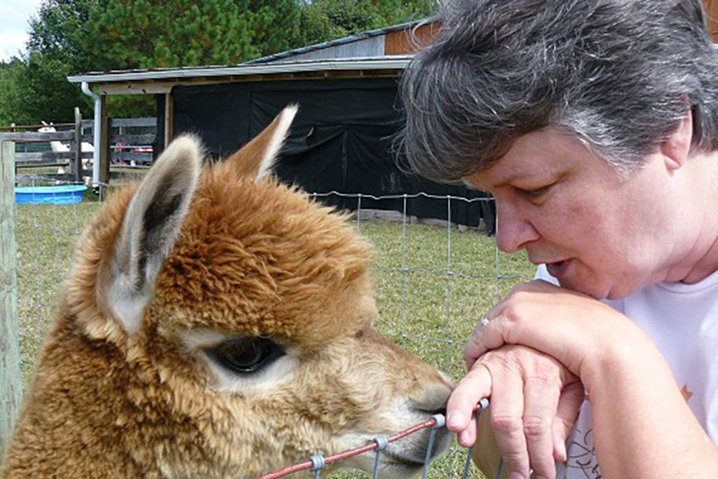 03-shortly-after-she-learned-what-alpacas-were