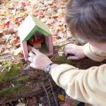 See the Magical Fairy Trail Hidden in Suburban New Jersey