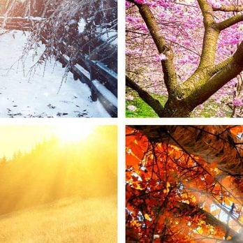 Winter or Summer? Spring or Fall? Find Out Your Season Personality