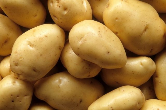 012_potatoes_foods_to_never_put_in_blender_