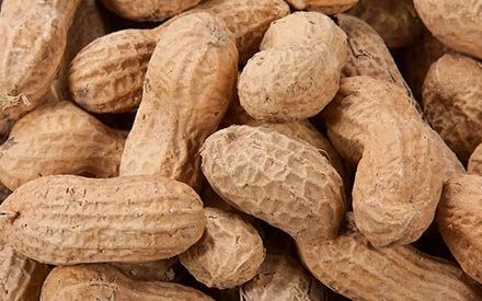 Yes, You Can Feed Peanuts to Babies. Here's Why.