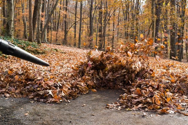 01_leafblower_Why_You're_The_worst_leaf_blower