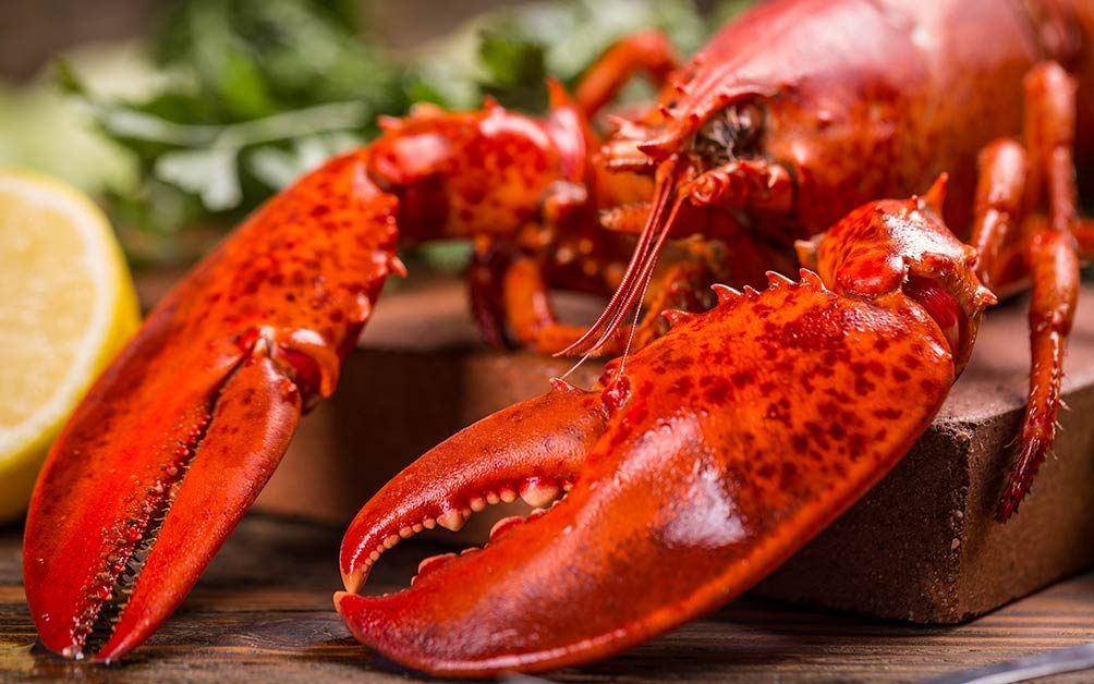 01_lobsters_foods-_even_professional_chefs_cook_in_the_microwave_